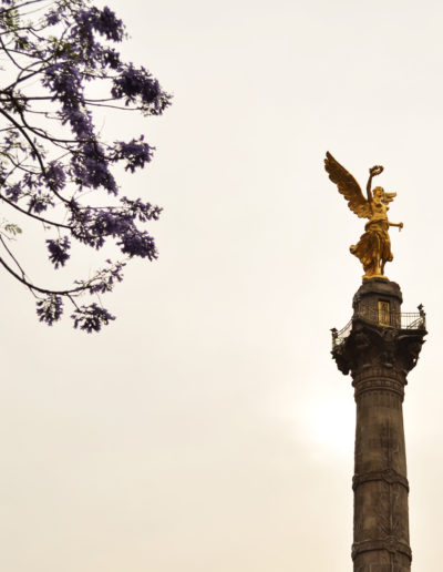 081 2012_03_23 El Angel_web